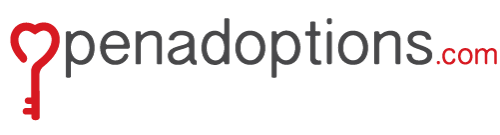Open Adoption | Agencies, Records, Pros & Cons, Facts